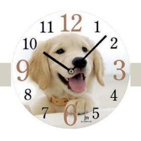 orologio da Muro con Immagine di bellissimo Cane 14846
