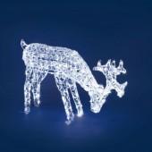 Renna con cristalli che mangia 200 LED bianchi LOTTI